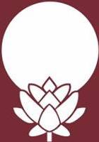 Yoga Santa Felicidade - Bem-Estar e Equilíbrio ao Seu Alcance